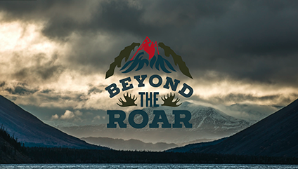 beyond-the-roar